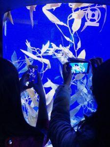 2016-04-30 ripley's aquarium toronto